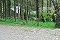 Carnguwch Fawr - geograph.org.uk - 415901.jpg
