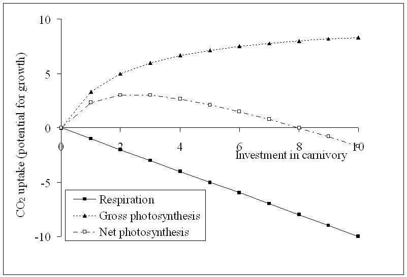 Carnivorous plant model 1