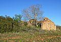 Casa en ruïnes amb arbre, Xàbia.JPG
