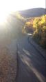 Cascade Springs trail, Utah.png