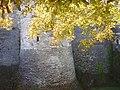 Château d'Angers 2008 PD 16.JPG