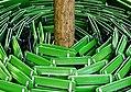 Chairs Around a Tree (11267926975).jpg