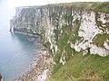 Chalk cliffs at Bempton - geograph.org.uk - 604831.jpg