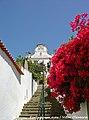 Chamusca - Portugal (6513016205).jpg