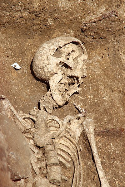 File:Chantier de fouilles à Morigny-Champigny en juin 2012 69.jpg