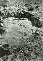 Chapters in the prehistory of eastern Arizona (1962) (20590094885).jpg