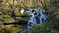 Chaux-les-passavant, cascade amont de l'Audeux.jpg