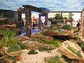 Chelsea Flower Show 2009 Rock garden.jpg