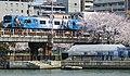 Cherry blossom Osaka Loop Line Sakuranomiya 03-27-2018 (39425304040).jpg