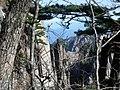 China Anhui Huang Shan scenic view 7.JPG