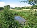 Chitterne Brook - geograph.org.uk - 484273.jpg