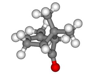 Chrysanthenone - Image: Chrysanthenone 3D