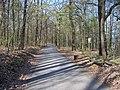Chuchelský háj, lesní cesta (03).jpg