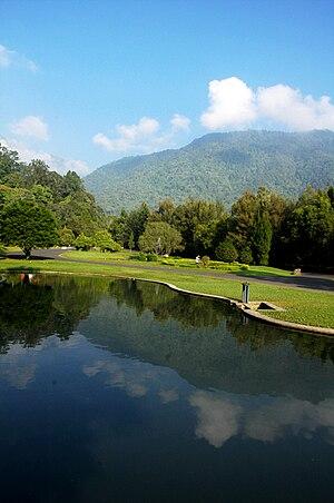 Cibodas Botanical Garden - View of Mandalawangi Lake