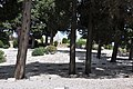 Cimetiere Militaire Franco - Italien, Saint-Mandrier-sur-Mer, Provence-Alpes-Côte d'Azur, France - panoramio (13).jpg