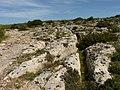 Clapham Junction - Cart Ruts Malta - panoramio (1).jpg