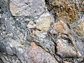 Clast-rich mixtite (Coleman Member, Gowganda Formation, Paleoproterozoic, ~2.3 Ga; Percival Lake roadcut, Ontario, Canada) 15 (40760432653).jpg