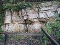 Cliff in Kirtlington quarry - geograph.org.uk - 636277.jpg