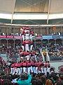 Concurs de Castells 2008 P1220454.JPG