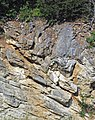 Copper Creek Thrust Fault (Thorn Hill section, northeastern Tennessee, USA) 7.jpg