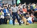 Correctional Services Dog Unit 02.JPG
