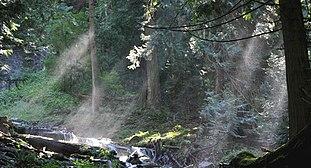 Crepuscular rays by Bridal Veil Falls