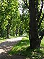 Czeski Raj, Sychrov, park zamkowy(Aw58).JPG