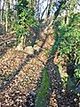 DD-Bienertgarten-Wasserlauf1.jpg