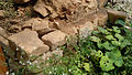 Dacian Fortress of Tilisca - 44.jpg