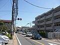 Dai in Kamakura.jpg