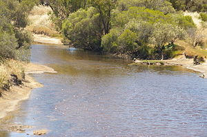 Dale River - Avondale Agricultural Research Station, Dale River