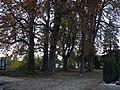 Darlingerode friedensstraße gerichtsstätte 2018-10-13 (48).jpg