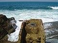 Desafio Volta ao Mundo - Praia de Porto Dinheiro - Portugal (158123367).jpg