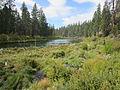 Deschutes River Trail to Benham Falls, Oregon (2014) - 12.JPG
