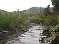Dewey Creek Water Quality Testing, Yukon-Charley Rivers, 2003 (d3d593b6-5701-4641-b8ee-90317dbfe9fb).jpg