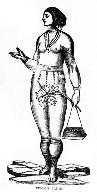 Island Caribs - Drawing of a Carib woman (1888)