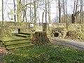Die Ruine von Gut Caldenhof von Westen.jpg