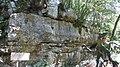 Dinopark, Funtana, Croatia (dinopark.hr) - panoramio (20).jpg