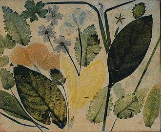 Louis Arthur Ducos du Hauron - Image: Direct Print 1869
