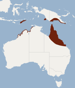 Distribution of Scotorepens sanborni.png