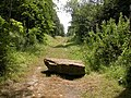 Disused Railway - geograph.org.uk - 204198.jpg