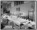 Division of Paleontology, Nat. Museum, (Washington, D.C.) LCCN2016825514.jpg