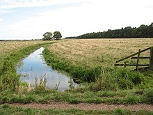 Drainage ditch in the Damgate Marshes - geograph.org.uk - 1480220.jpg