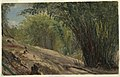 Drawing, Bamboo Grove, Jamaica, 1865 (CH 18200609).jpg