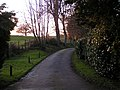 Driveway on the edge of Whimple - geograph.org.uk - 1623515.jpg