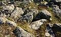 Dun a Chaolais 02.jpg