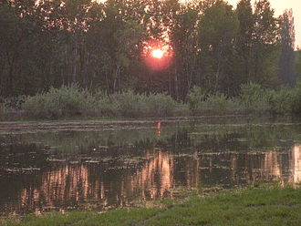 Dunajské luhy Protected Landscape Area - Sunset over the Danube wetlands