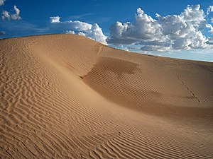 Samalayuca Dune Fields - Image: Dunas samalayuca