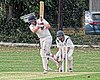 Dunmow CC v Brockley CC at Great Dunmow, Essex, England 34.jpg