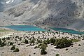 Dushakha Lakes in Fann Mountains 2.jpg